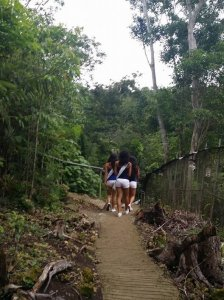 Binibinis up-close experience with a tarsier