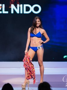 BP-USA Swimsuit Competition